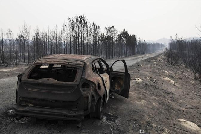 Políticos podem ser responsabilizados criminalmente pelos incêndios de Outubro